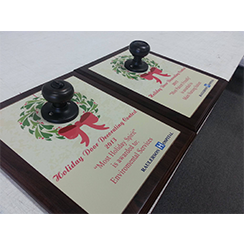 Award plaque  by Custom Graphics and Signs