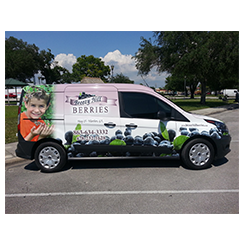 Full van wrap and van wrap from at Custom Graphics and Signs, Florida