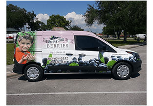 Full van wrap by Custom Graphics and Signs, Florida
