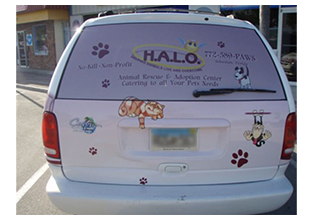Perforated window film with full vehicle wrap Custom Graphics and Signs